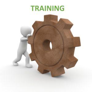 flowz.co.uk training